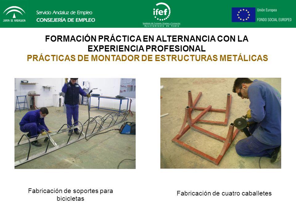 FORMACIÓN PRÁCTICA EN ALTERNANCIA CON LA EXPERIENCIA PROFESIONAL PRÁCTICAS DE MONTADOR DE ESTRUCTURAS METÁLICAS