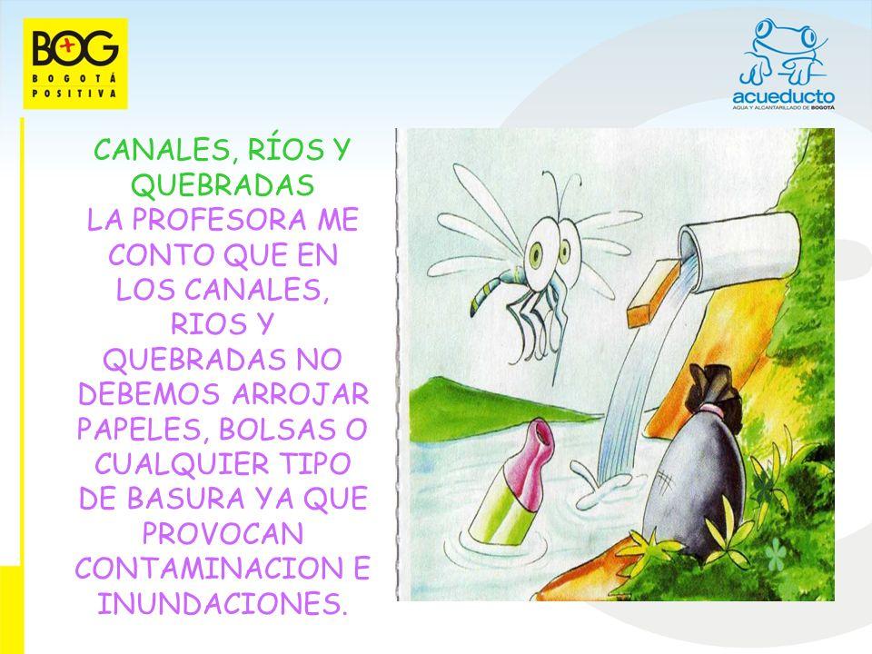 CANALES, RÍOS Y QUEBRADAS