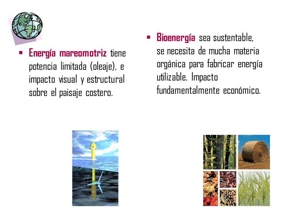 Bioenergía sea sustentable, se necesita de mucha materia orgánica para fabricar energía utilizable. Impacto fundamentalmente económico.