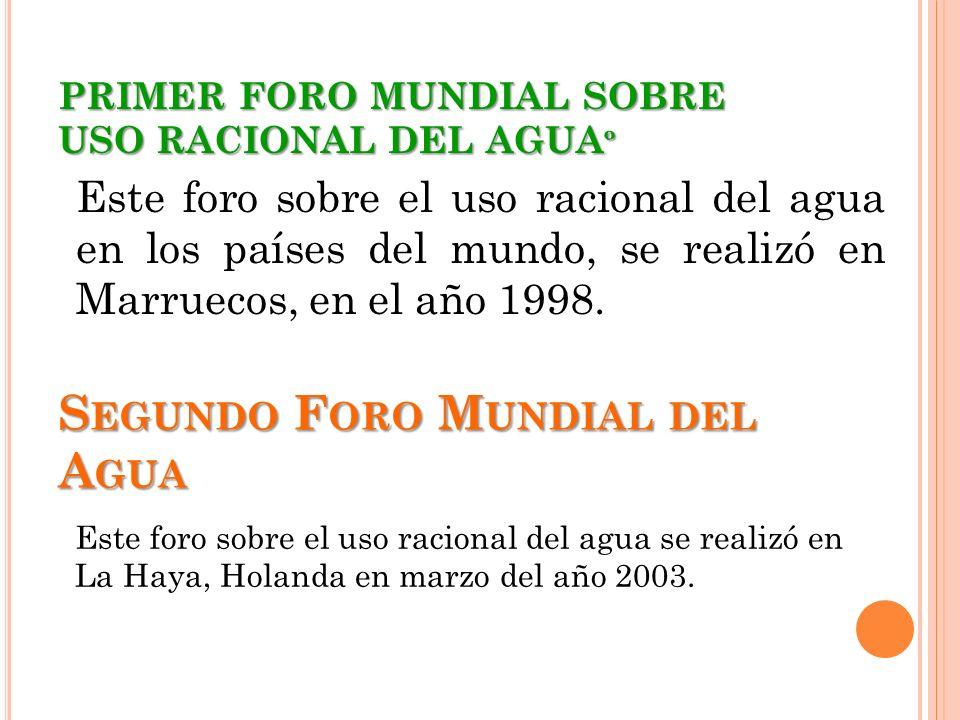 PRIMER FORO MUNDIAL SOBRE USO RACIONAL DEL AGUAº