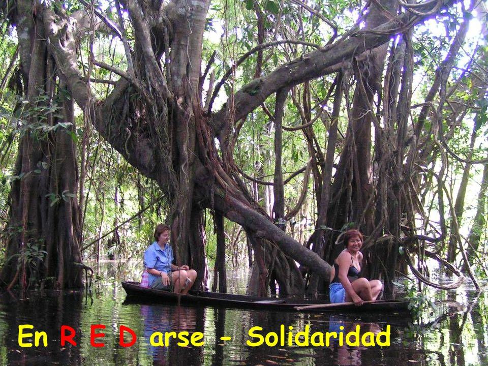En R E D arse - Solidaridad