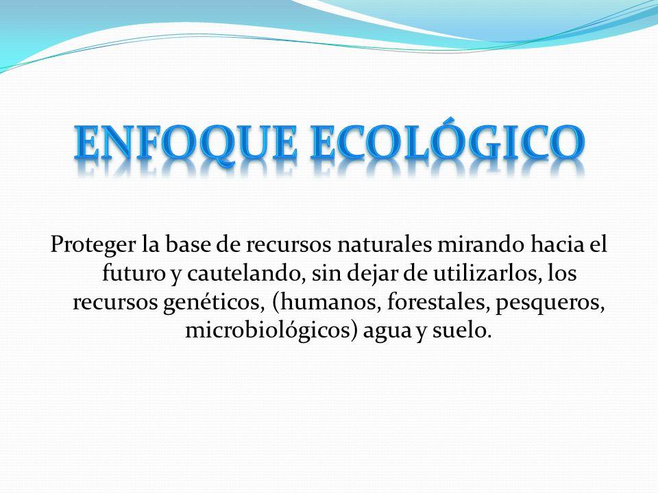 Enfoque Ecológico