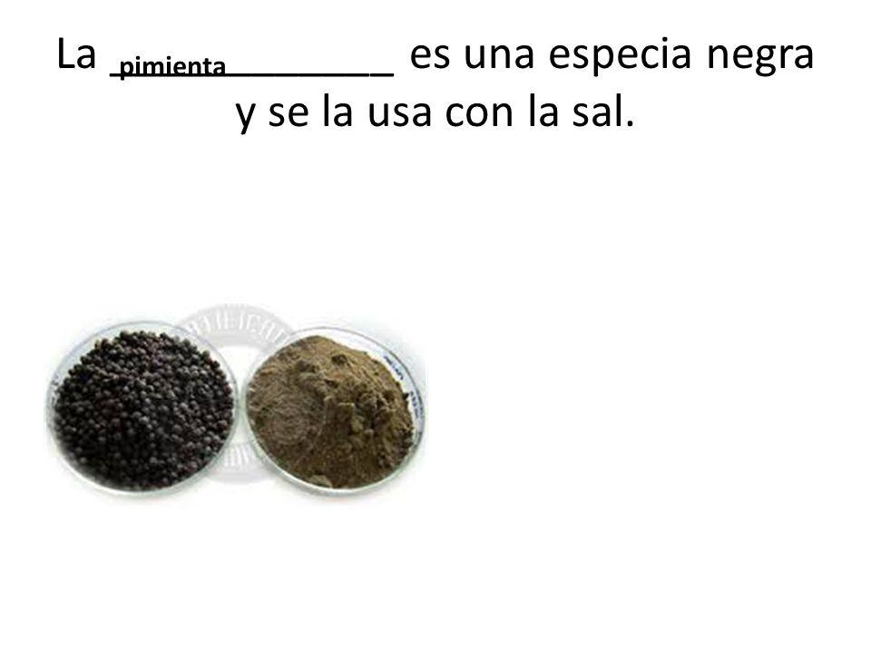 La ____________ es una especia negra y se la usa con la sal.