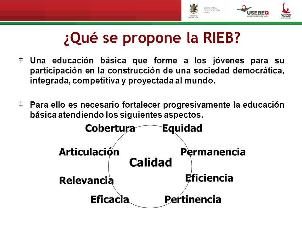¿Qué se propone la RIEB Calidad Cobertura Equidad Articulación