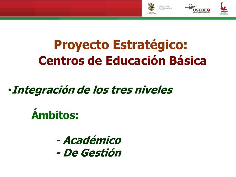 Proyecto Estratégico: Centros de Educación Básica