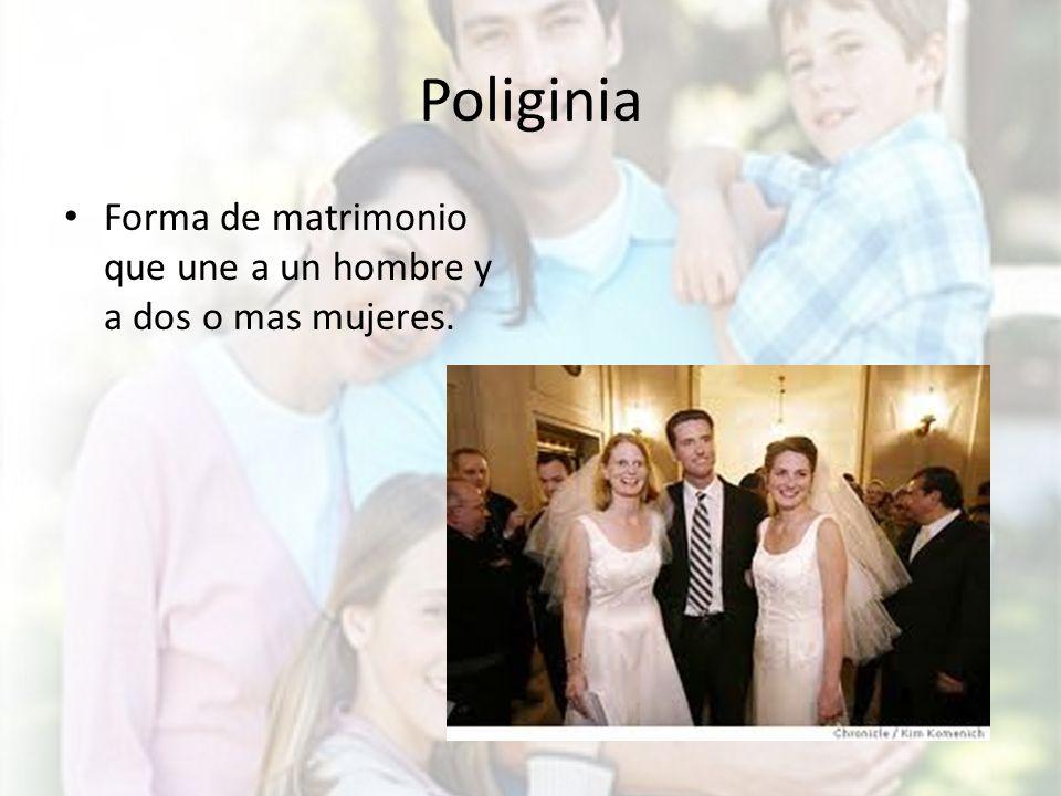 Matrimonio O Que é : Familias y hogares sociologÍa ppt video online descargar