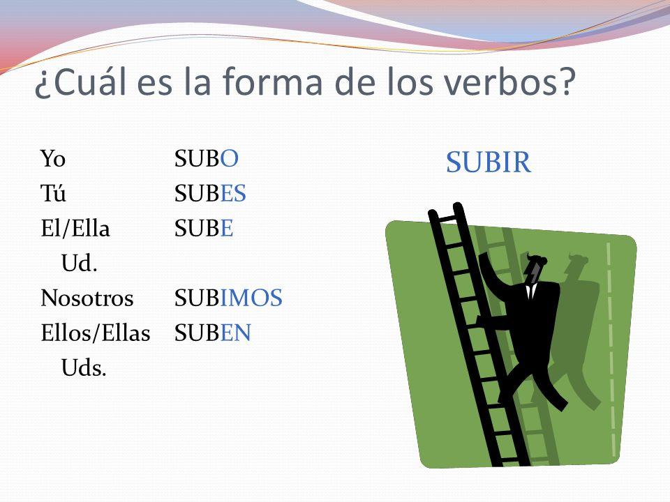 ¿Cuál es la forma de los verbos