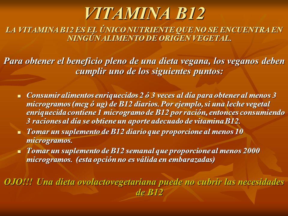 Es el ser humano omn voro ppt descargar - En que alimentos esta la vitamina b12 ...