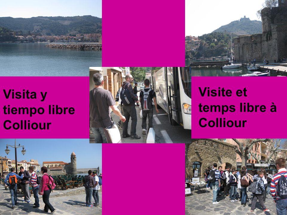 Visite et temps libre à Colliour