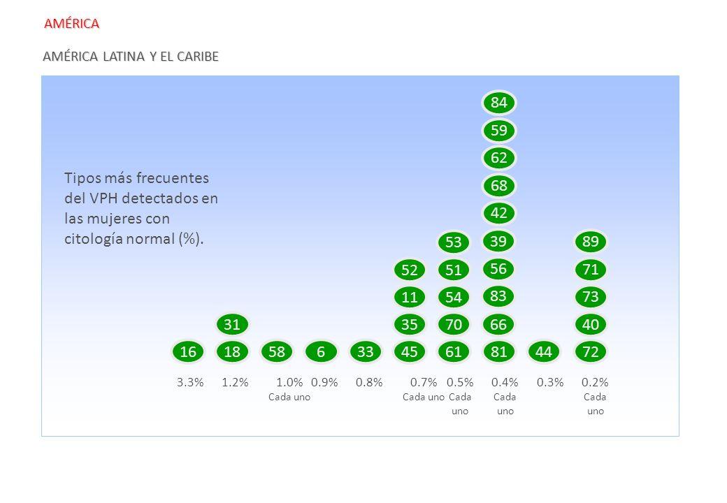 AMÉRICA AMÉRICA LATINA Y EL CARIBE. 16. 18. 58. 6. 33. 3.3% 45. 31. 4. 61. 70. 51. 54.