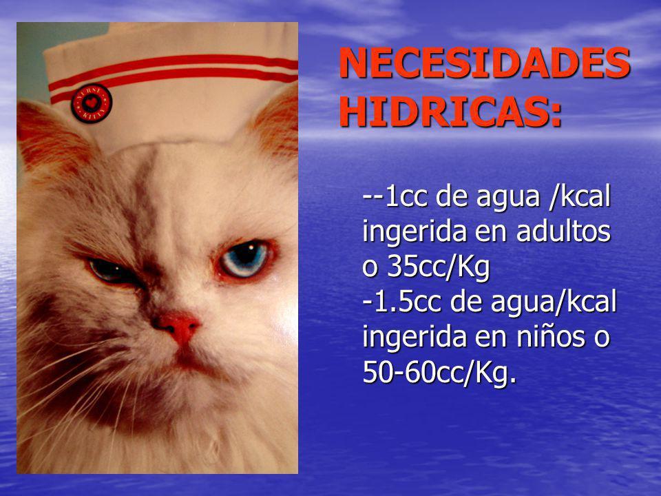 NECESIDADES HIDRICAS: