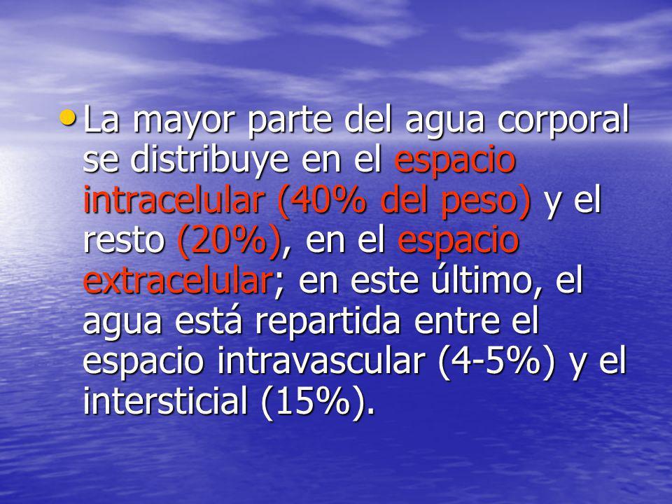 La mayor parte del agua corporal se distribuye en el espacio intracelular (40% del peso) y el resto (20%), en el espacio extracelular; en este último, el agua está repartida entre el espacio intravascular (4-5%) y el intersticial (15%).