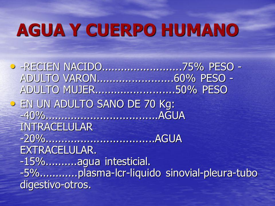 AGUA Y CUERPO HUMANO