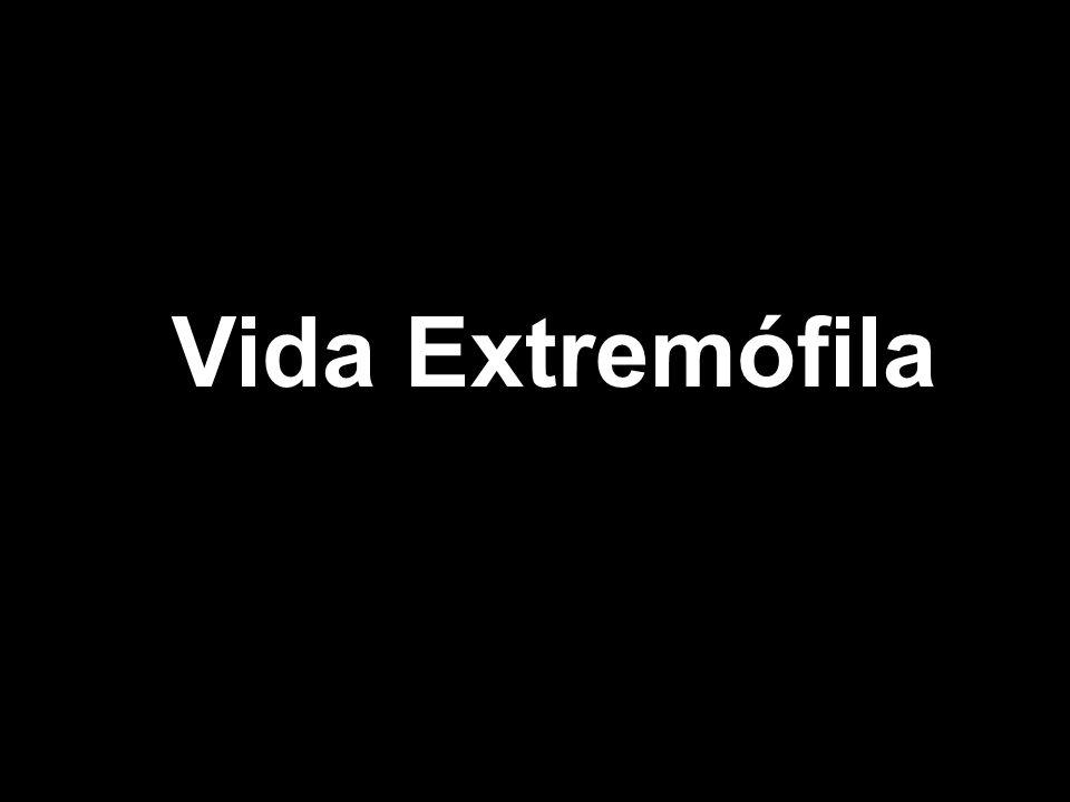 Vida Extremófila
