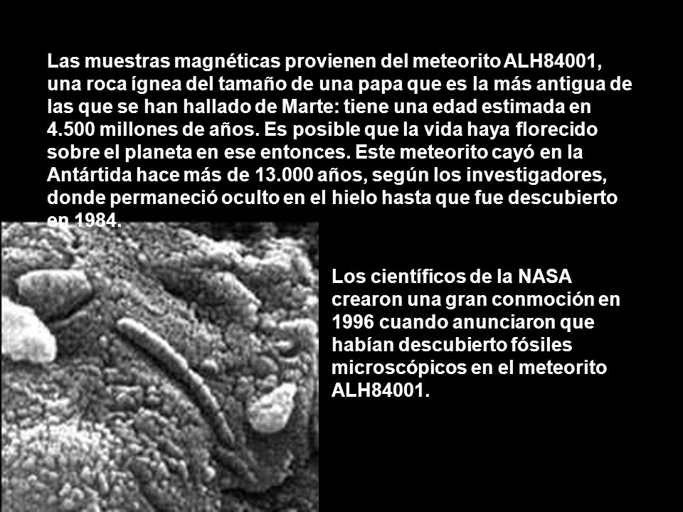 Las muestras magnéticas provienen del meteorito ALH84001, una roca ígnea del tamaño de una papa que es la más antigua de las que se han hallado de Marte: tiene una edad estimada en 4.500 millones de años. Es posible que la vida haya florecido sobre el planeta en ese entonces. Este meteorito cayó en la Antártida hace más de 13.000 años, según los investigadores, donde permaneció oculto en el hielo hasta que fue descubierto en 1984.