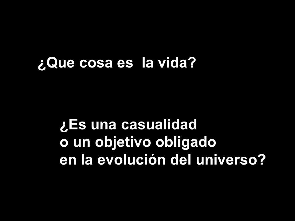 ¿Que cosa es la vida ¿Es una casualidad o un objetivo obligado en la evolución del universo