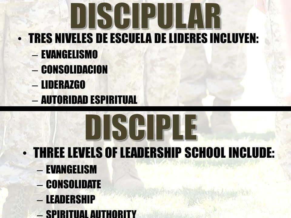 the three levels of leadership pdf