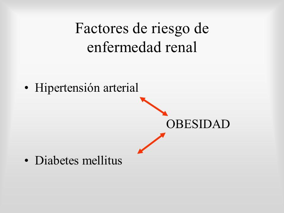 Factores de riesgo de enfermedad renal