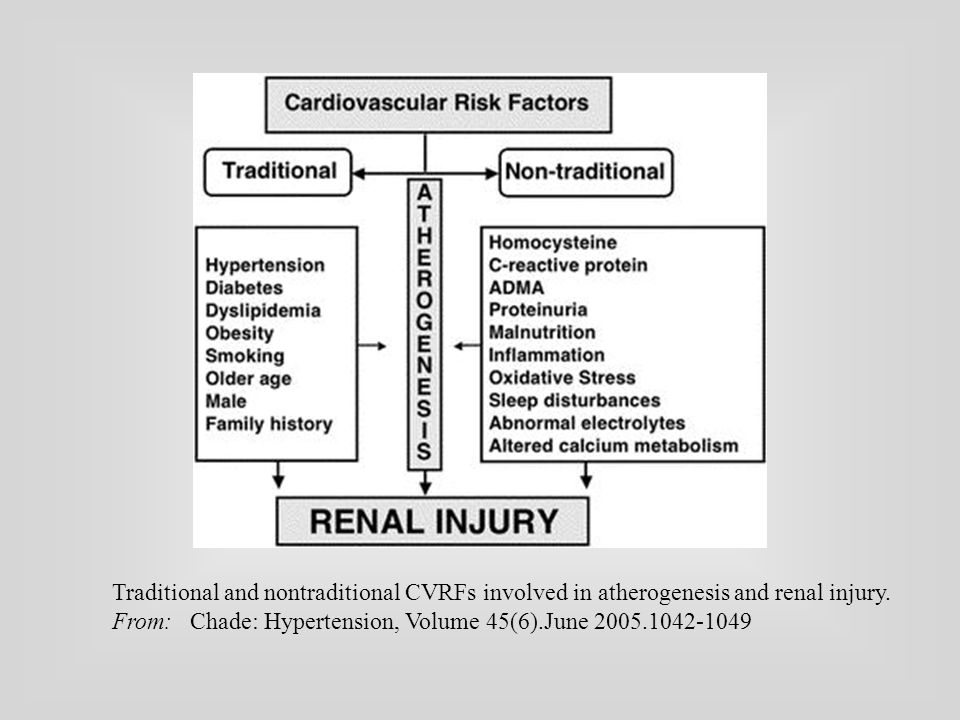 Traditional and nontraditional CVRFs involved in atherogenesis and renal injury.