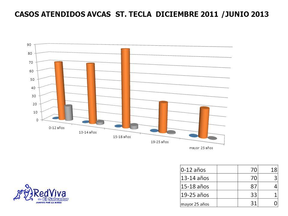 CASOS ATENDIDOS AVCAS ST. TECLA DICIEMBRE 2011 /JUNIO 2013