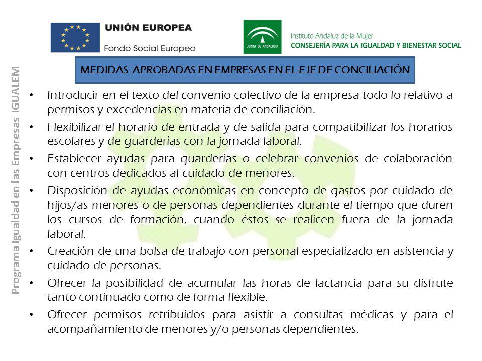 MEDIDAS APROBADAS EN EMPRESAS EN EL EJE DE CONCILIACIÓN