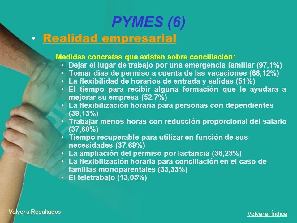 PYMES (6) Realidad empresarial
