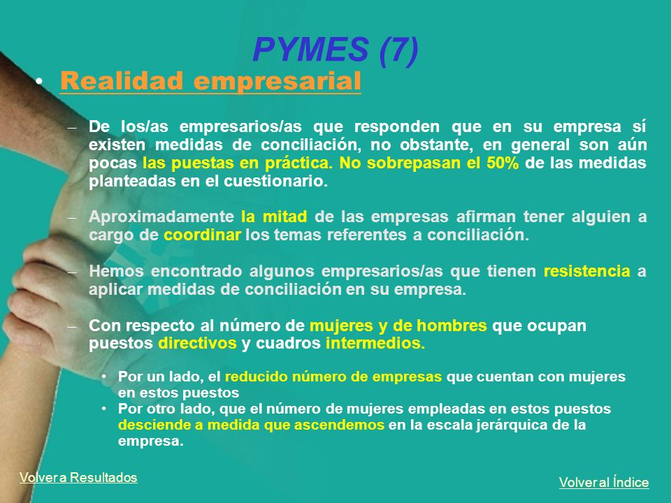 PYMES (7) Realidad empresarial