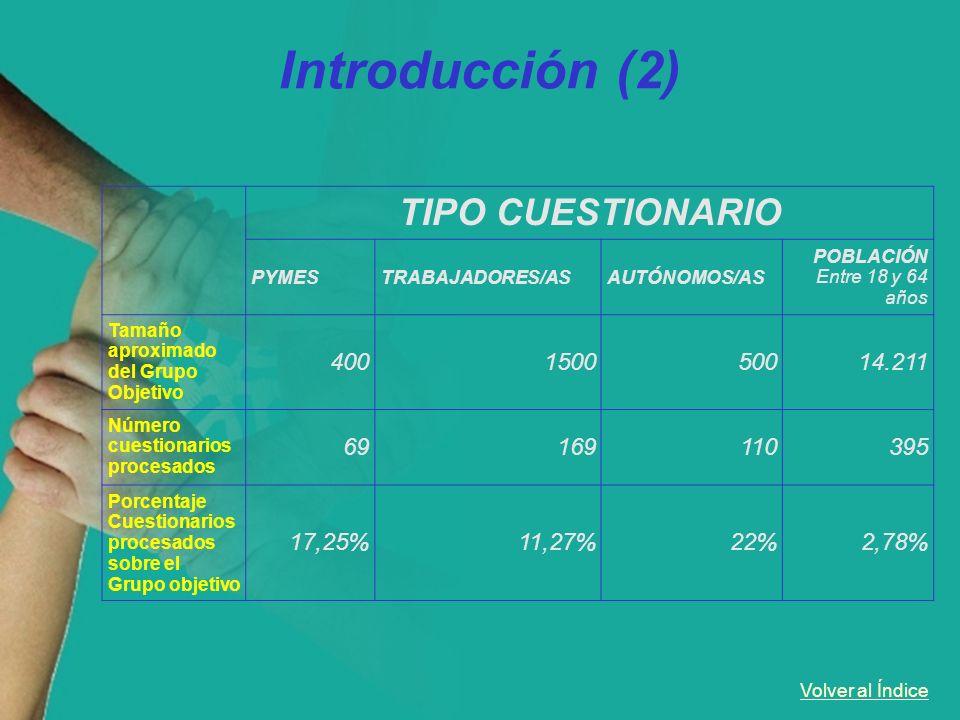 Introducción (2) TIPO CUESTIONARIO 400 1500 500 14.211 69 169 110 395