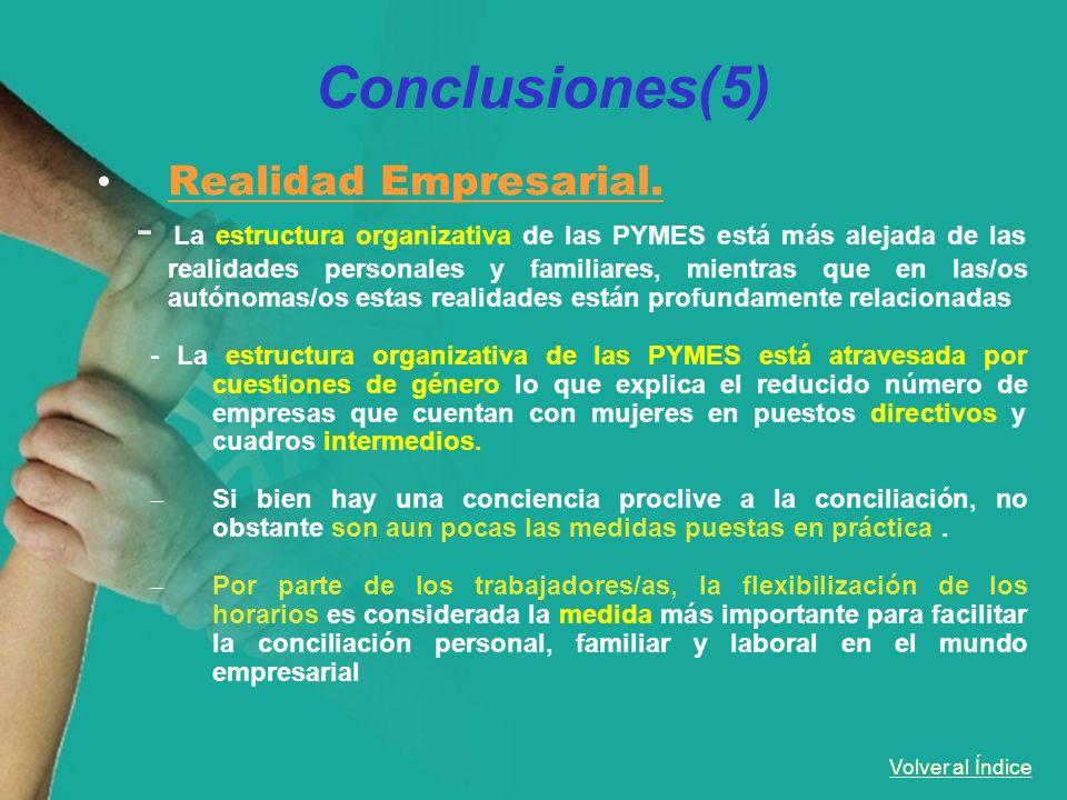 Conclusiones(5)Realidad Empresarial.