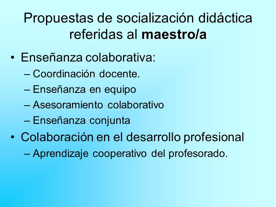 Propuestas de socialización didáctica referidas al maestro/a