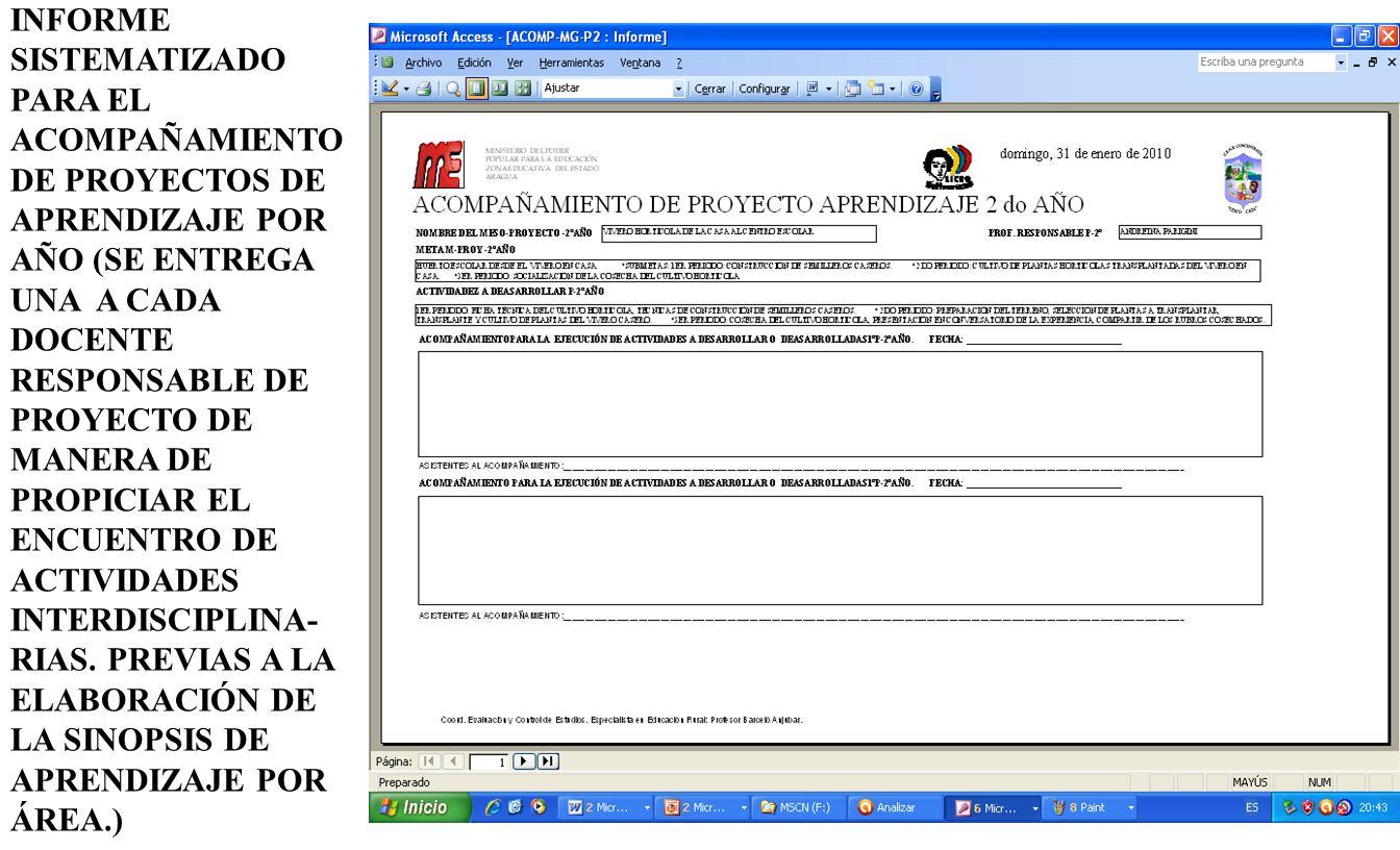 INFORME SISTEMATIZADO PARA EL ACOMPAÑAMIENTO DE PROYECTOS DE APRENDIZAJE POR AÑO (SE ENTREGA UNA A CADA DOCENTE RESPONSABLE DE PROYECTO DE MANERA DE PROPICIAR EL ENCUENTRO DE ACTIVIDADES INTERDISCIPLINA- RIAS.