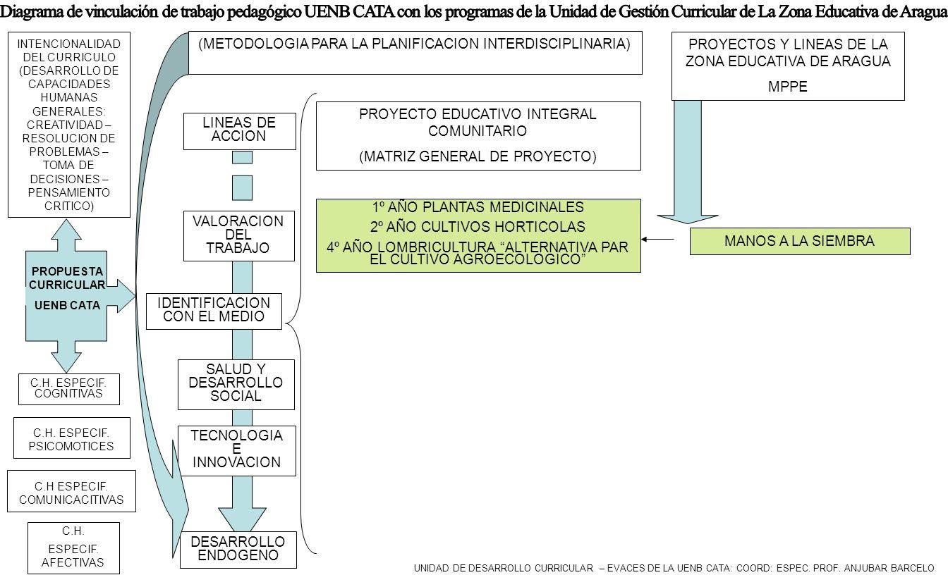 Diagrama de vinculación de trabajo pedagógico UENB CATA con los programas de la Unidad de Gestión Curricular de La Zona Educativa de Aragua