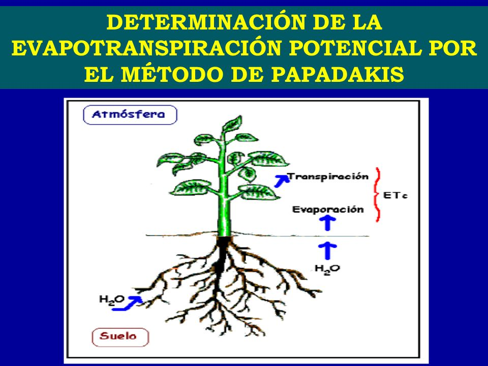 DETERMINACIÓN DE LA EVAPOTRANSPIRACIÓN POTENCIAL POR EL MÉTODO DE PAPADAKIS