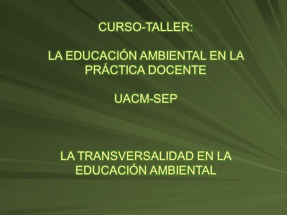LA EDUCACIÓN AMBIENTAL EN LA PRÁCTICA DOCENTE
