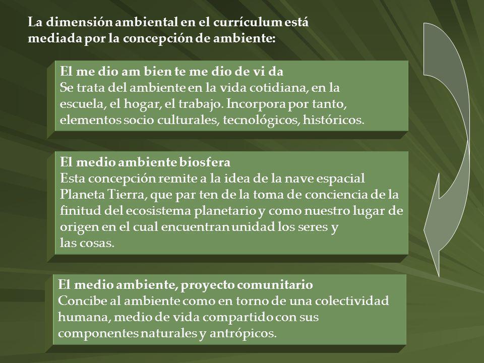 La dimensión ambiental en el currículum está mediada por la concepción de ambiente: