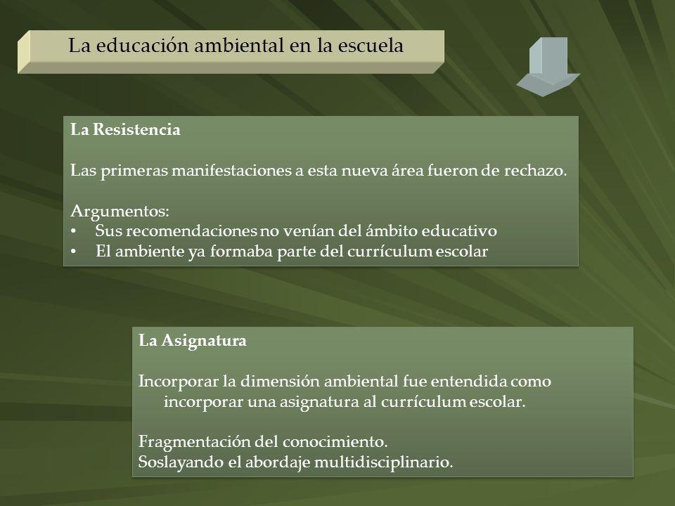 La educación ambiental en la escuela