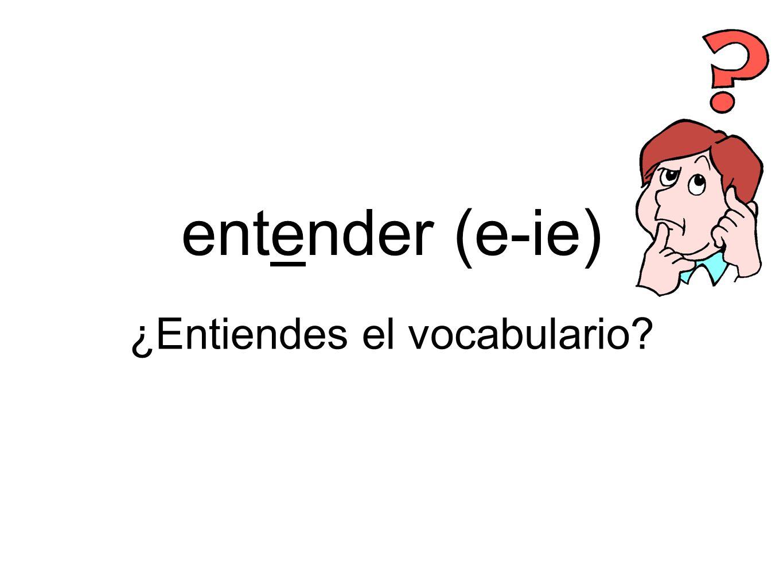 ¿Entiendes el vocabulario
