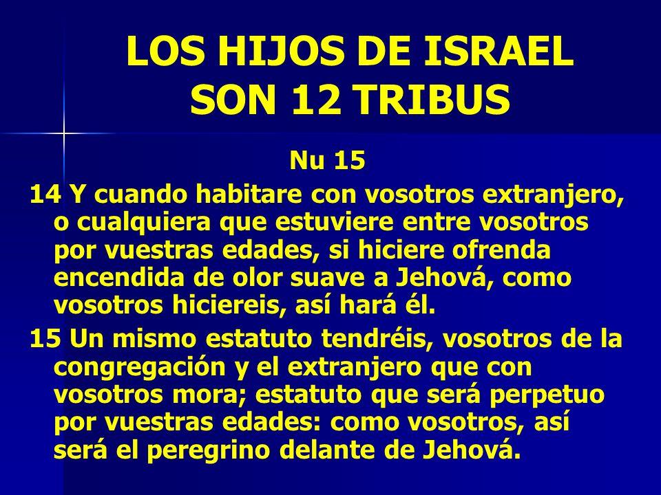 LOS HIJOS DE ISRAEL SON 12 TRIBUS