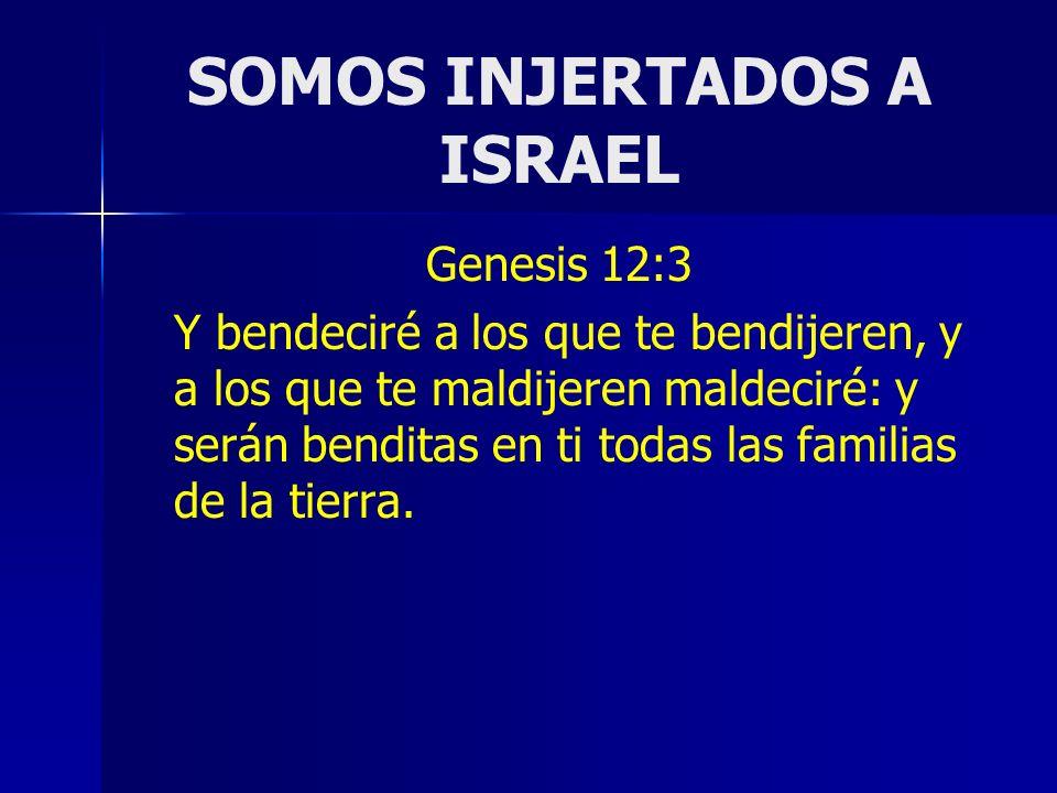 SOMOS INJERTADOS A ISRAEL