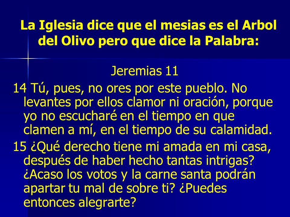 La Iglesia dice que el mesias es el Arbol del Olivo pero que dice la Palabra: