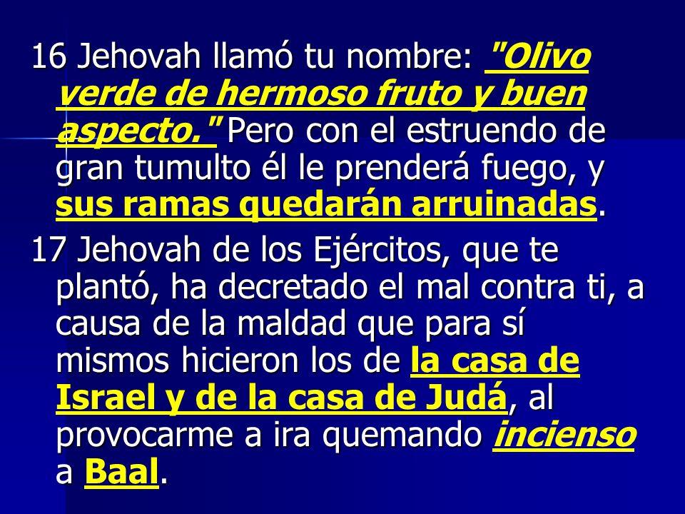 16 Jehovah llamó tu nombre: Olivo verde de hermoso fruto y buen aspecto. Pero con el estruendo de gran tumulto él le prenderá fuego, y sus ramas quedarán arruinadas.