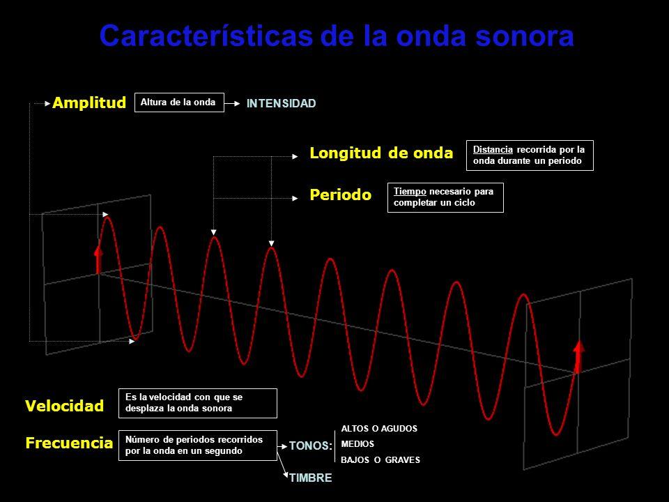 Características de la onda sonora