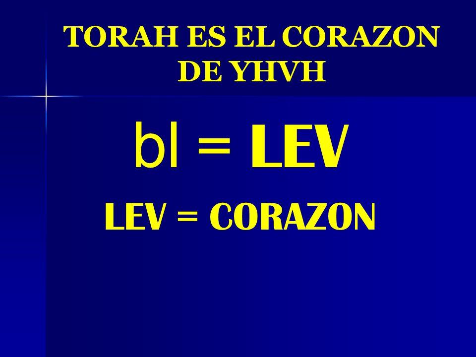 TORAH ES EL CORAZON DE YHVH
