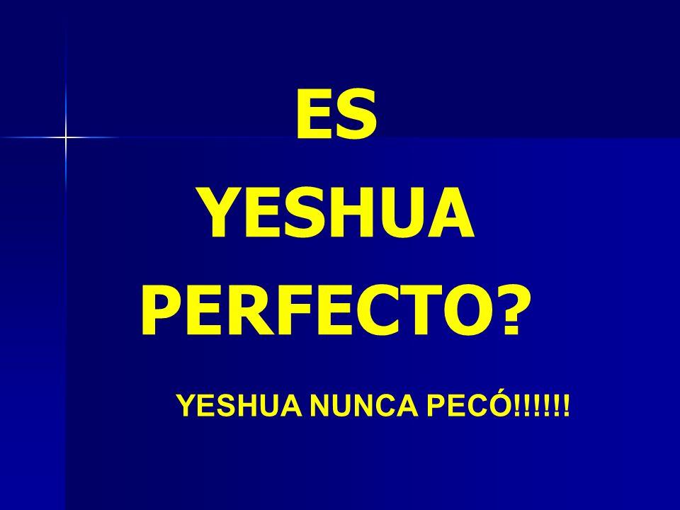 ES YESHUA PERFECTO YESHUA NUNCA PECÓ!!!!!!