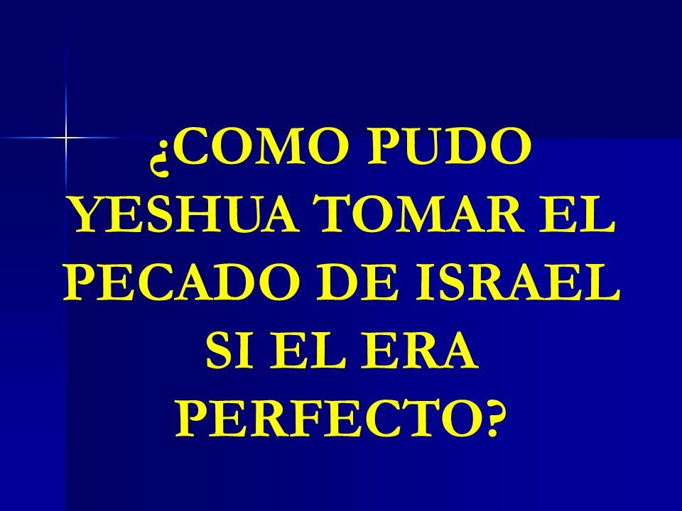 ¿COMO PUDO YESHUA TOMAR EL PECADO DE ISRAEL SI EL ERA PERFECTO