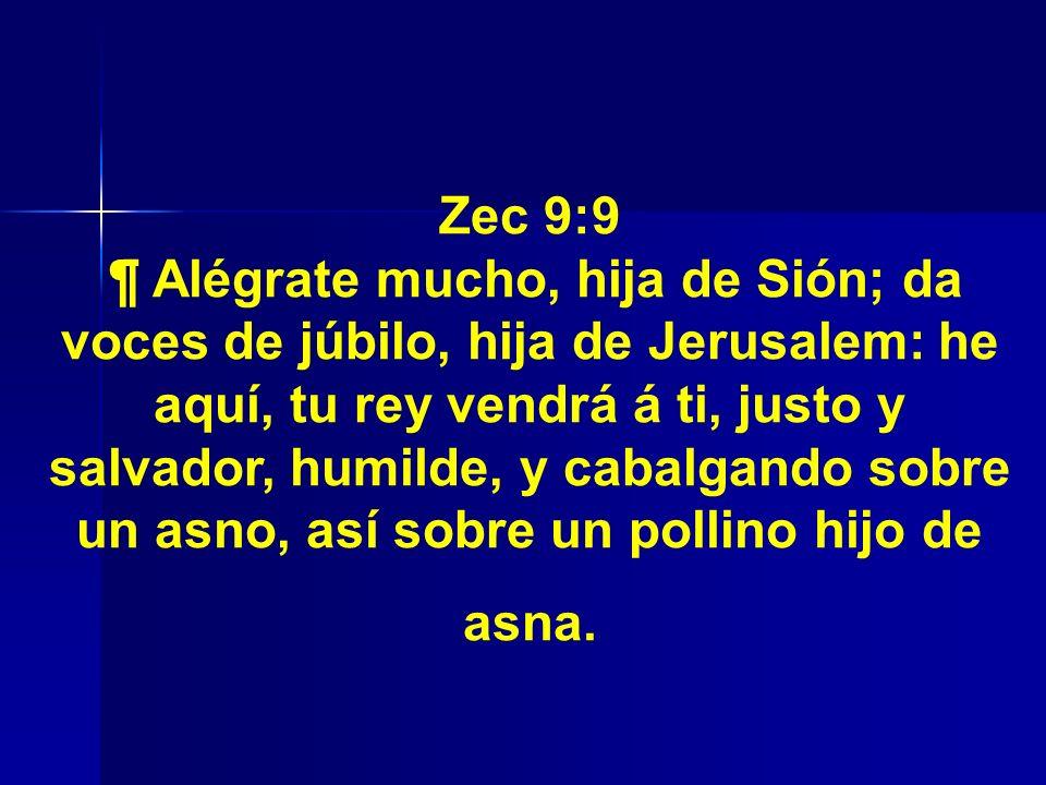 Zec 9:9