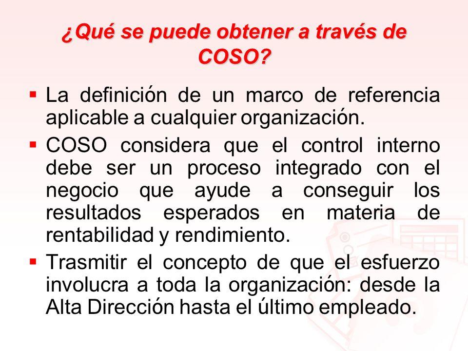 ¿Qué se puede obtener a través de COSO