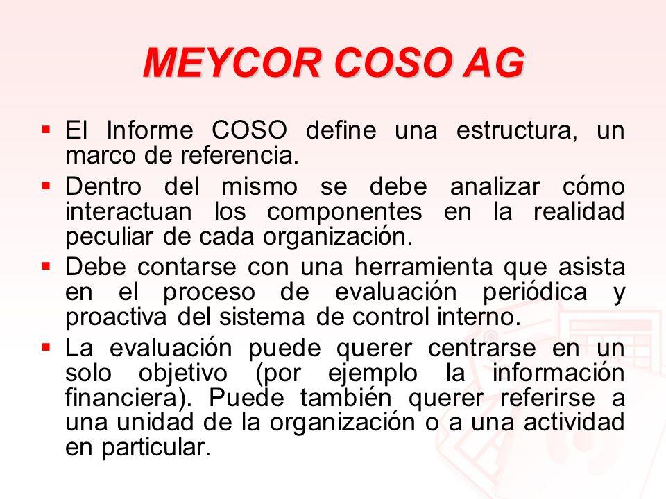 MEYCOR COSO AGEl Informe COSO define una estructura, un marco de referencia.