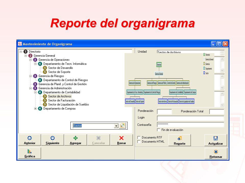 Reporte del organigrama