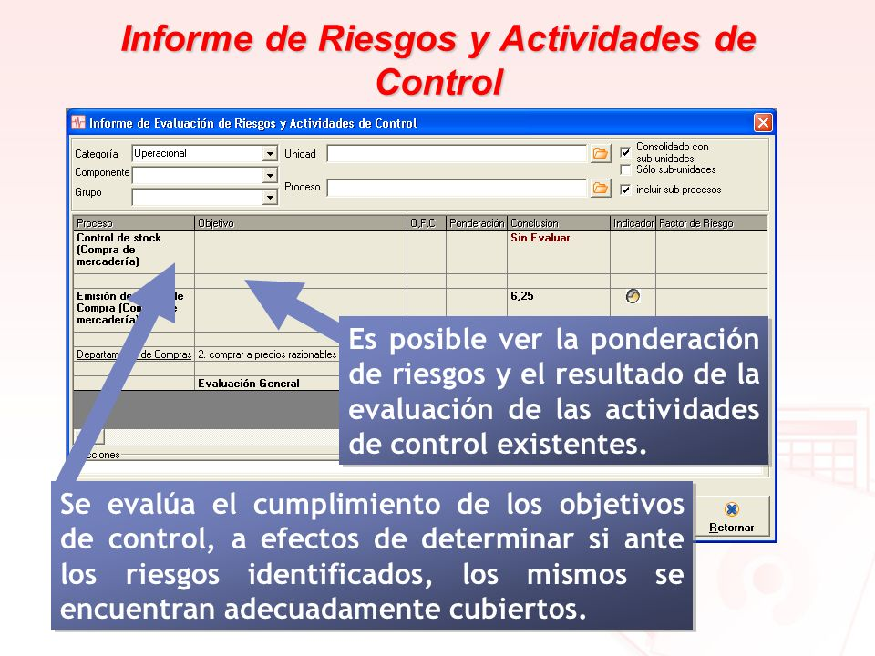 Informe de Riesgos y Actividades de Control